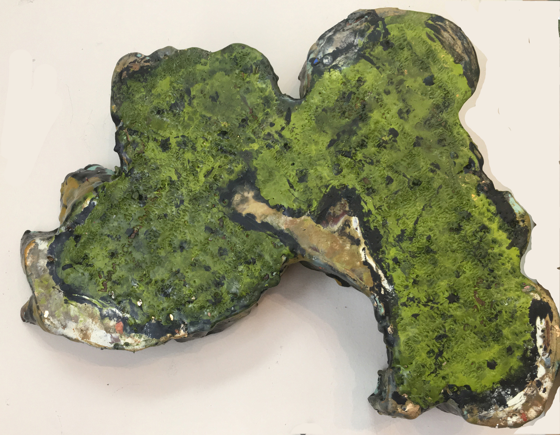 Largespore Map Lichen