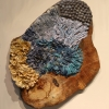 Blue and Gold Lichen