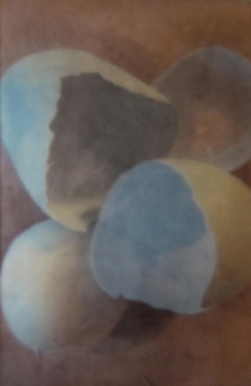 Eggshells I