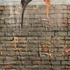 Two Birds on a Brick Wall